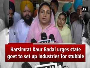 Harsimrat Kaur Badal urges state govt to set up industries for stubble [Video]