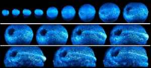 News video: New Microscope Offers 4-D View Of Organ Development Inside Mouse Embryo