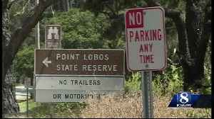 Want to visit Point Lobos? You may need a reservation soon [Video]