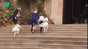 Prince George And Princess Charlotte Wave To The Windsor Crowds [Video]