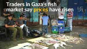 Gaza's fishermen struggle as Israel tightens restricted fishing zone [Video]
