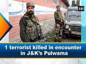 News video: 1 terrorist killed in encounter in J-K's Pulwama