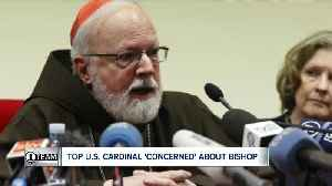 Top U.S. cardinal and papal adviser says Vatican should investigate Bishop Malone [Video]