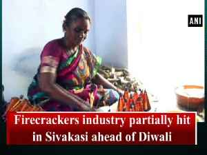 Firecrackers industry partially hit in Sivakasi ahead of Diwali [Video]