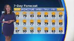 Amber Lee's Weather Forecast (Oct. 13) [Video]
