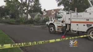 Toppled Tree Causes Power Outages In NJ [Video]