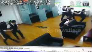 Python drops from ceiling onto staff in China bank [Video]