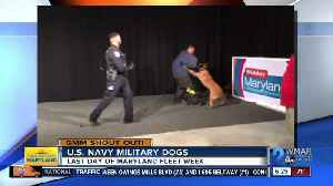 Good morning from the U.S. Navy military dogs! [Video]