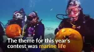 Pumpkin carving reaches new depths in underwater contest [Video]