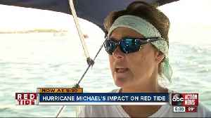 Hurricane Michael gives Anna Maria Island red tide relief [Video]