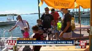 Hurricane gave some areas red tide relief [Video]