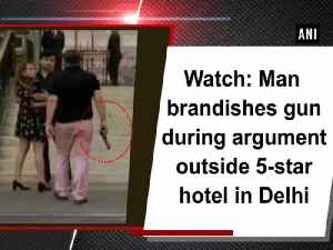 Watch: Man brandishes gun during argument outside 5-star hotel in Delhi [Video]