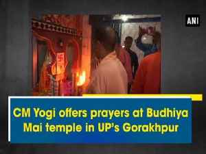CM Yogi offers prayers at Budhiya Mai temple in UP's Gorakhpur [Video]