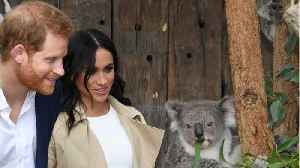 Meghan Markle and Prince Harry Receive Baby Gifts [Video]