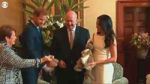 Meghan Markle and Prince Harry visit Sydney, receive gifts for unborn baby [Video]