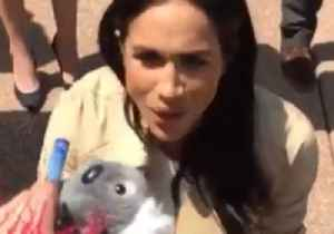 'This is for Your Baby': Child Offers Pregnant Meghan Koala Soft Toy [Video]