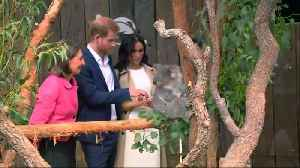 Prince Harry and pregnant wife Meghan meet a koala at Australian zoo [Video]