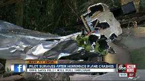 Experimental aircraft crashes into tree when pilot loses power in Zephyrhills [Video]