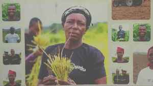 Nigerian farmers bypass banks to go directly to investors [Video]