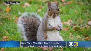 Doctors Suspect Man Died Of Extremely Rare Disease After Eating Squirrel Brains [Video]