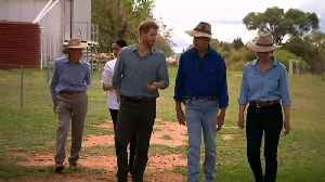 Prince Harry and Meghan feed cows at drought-hit Aussie farm [Video]