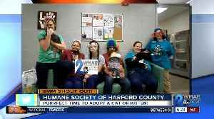 Good morning from the Humane Society of Harford County! [Video]
