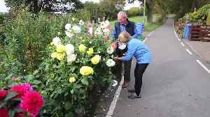 Couple told to remove flowers planted 30 years ago [Video]