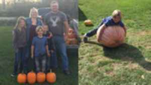 6-Year-Old Boy with Diabetes Sells Pumpkins To Raise Money To Get Service Dog [Video]