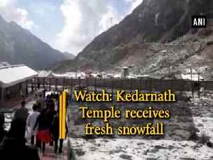 Watch: Kedarnath Temple receives fresh snowfall [Video]