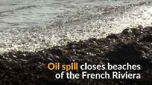 French Riviera closes its beaches due to oil spill [Video]