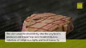 Eat Less Meat to Slow Climate Change [Video]