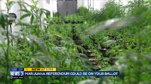What you need to know about marijuana referendums in Wisconsin [Video]