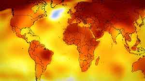 Why a Half Degree Rise in Global Temperature Would Be Catastrophic [Video]