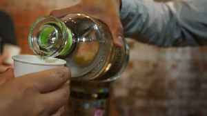 How Are Tequila And Mezcal Different From Each Other? [Video]