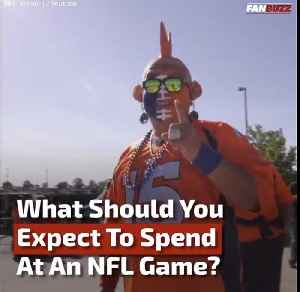 How Much Does It Cost to Attend an NFL Game? [Video]