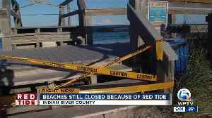 Beaches still closed because of Red Tide in Indian River County
