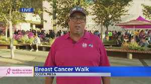'Real Men Wear Pink' Participants Work To Make Strides In Fight Against Breast Cancer [Video]