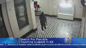 Suspect Sought In Bronx Forcible Touching Case [Video]