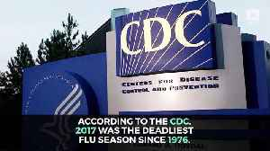 The Flu Killed 80,000 Americans in 2017 [Video]