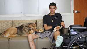 Soldier and his military dog travel the road to recovery together [Video]