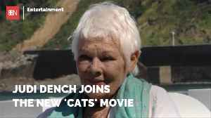 Judi Dench Lends Her Acting To 'Cats' [Video]