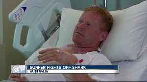 Surfer punches shark to stave off attack [Video]