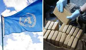 UN's 'War on Drugs' Deemed a Failure [Video]
