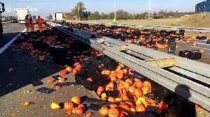 Hundreds of pumpkins fall from lorry and tumble onto Polish motorway [Video]