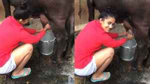 Babita Phogat motivates fans by milking a buffalo | वनइंडिया हि&#x90 [Video]