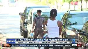 BALTIMORE DEVELOPING $2M PLAN FOR SQUEEGEE KIDS - PART OF EARN WHILE YOU LEARN PROGRAM [Video]