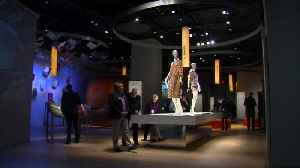 Bible Museum removes
