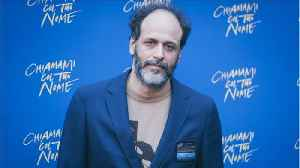 Luca Guadagnino Addresses Title Suggestions For Call Me By Your Name Sequel [Video]