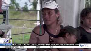 Honduran Caravan Seek Refuge in Mexico and U.S. [Video]