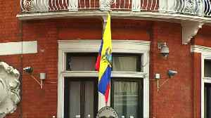 Ecuador have had enough of Assange - and his cat [Video]